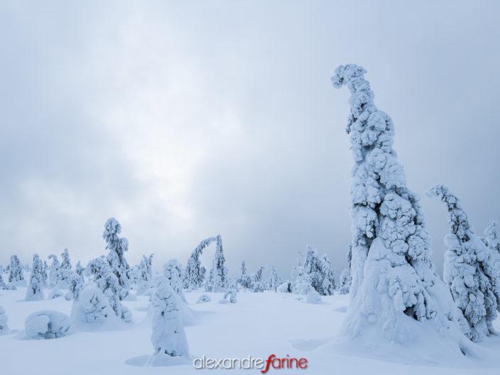 Finlande (Kuusamo)